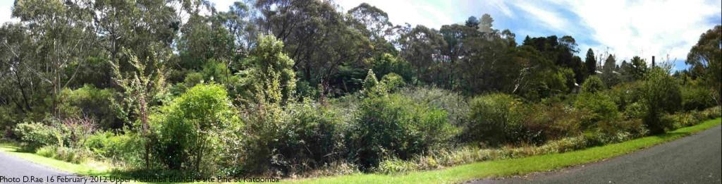 Upper Kedumba Bushcare Panorama 2012